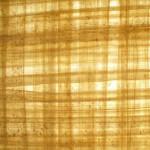 Entramado de papiro Crédito: WiKipedia