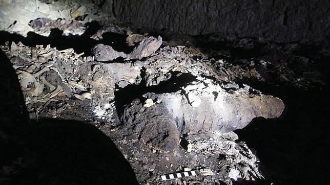 Los restos de una momia canina completa en una sección la catacumba